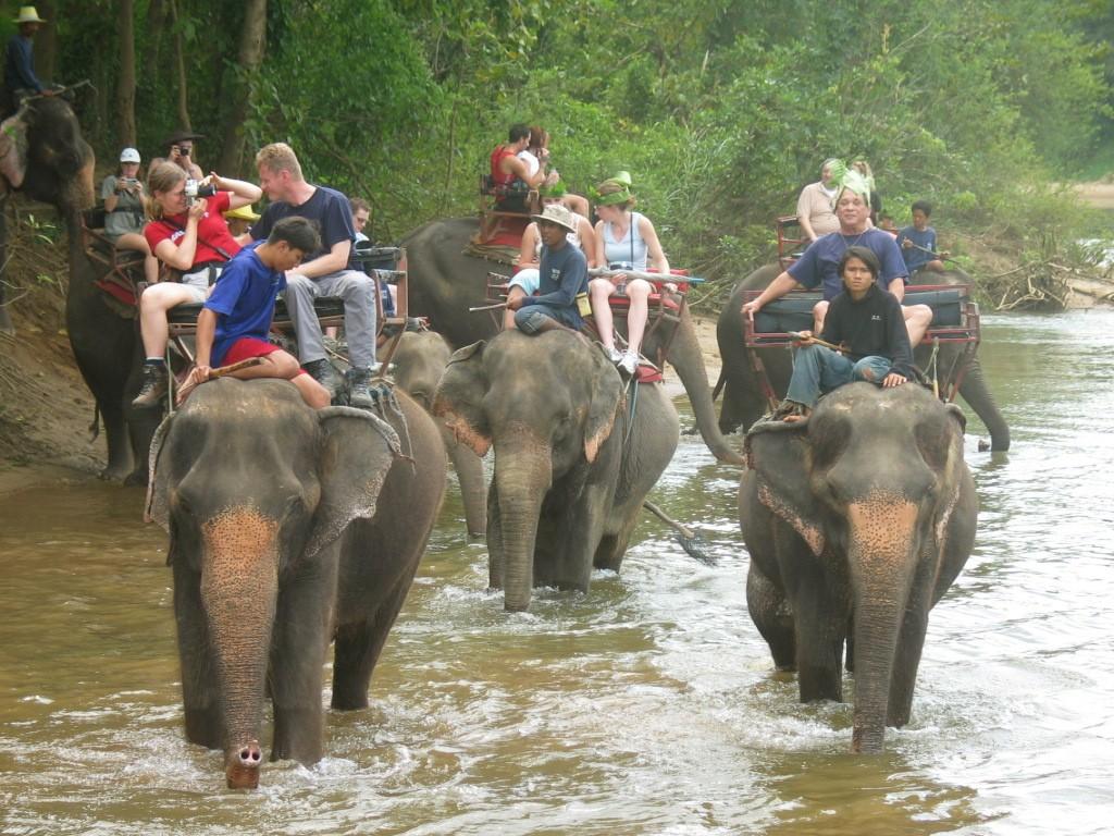 Thailand0249