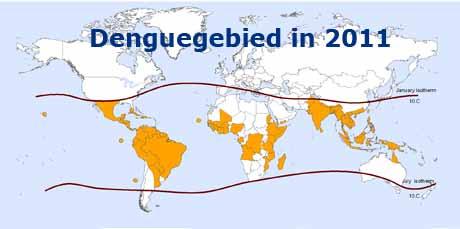denguegebied_2011