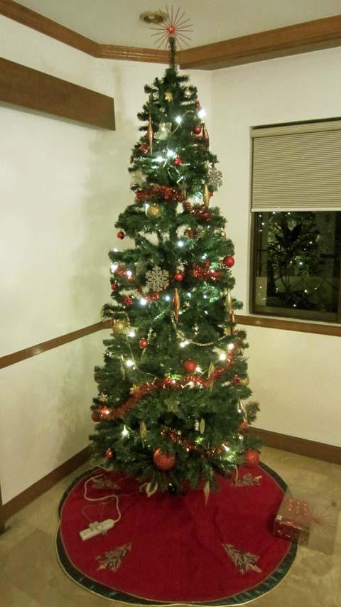 kerstboom_2012