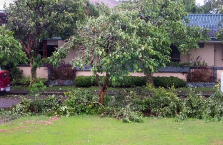 tyfoon_2014-07-16_023