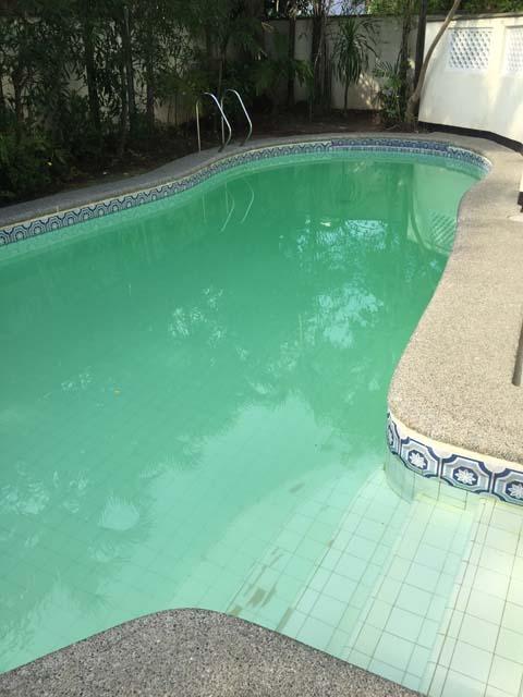 Zwembad_met_Alg