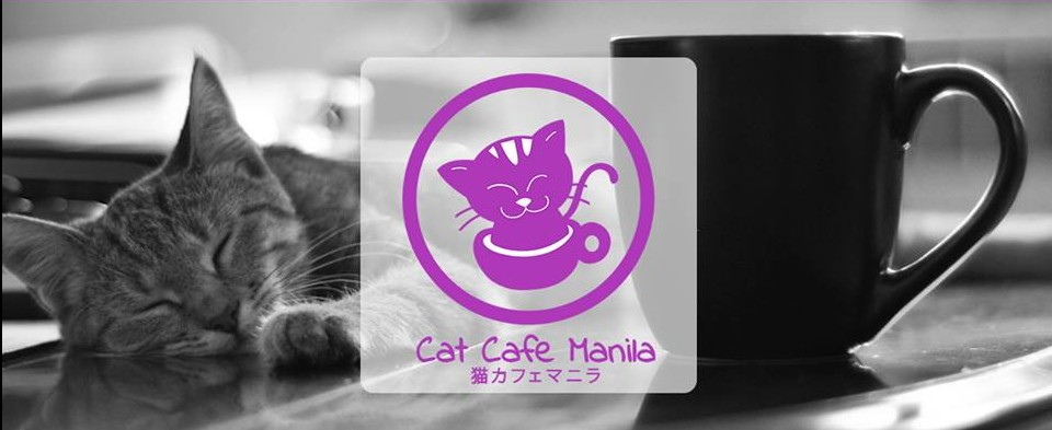 Cat_Cafe_Manila