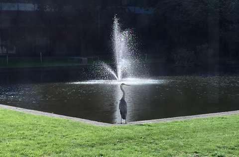 Reiger_Kesslerpark